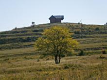 Купуваме земеделски земи в село Радево
